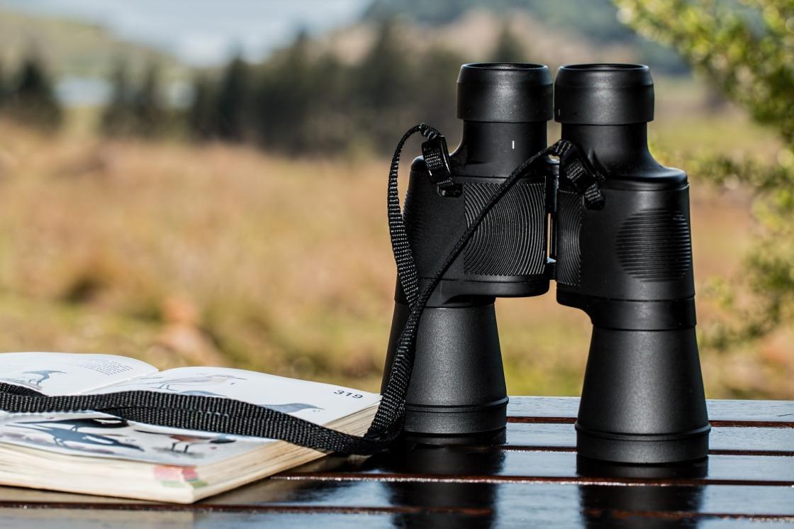 binoculars-995779_1920