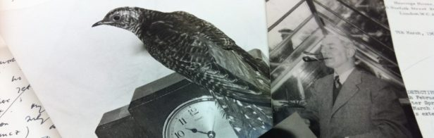 cropped-maxwell-knight-and-goo-the-cuckoo.jpg