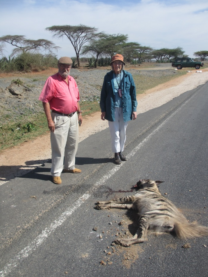 dead striped hyaena